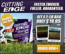 cutting-edge-grass-seed1