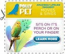perfect-polly-parakeet